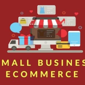 small business ecommerce website